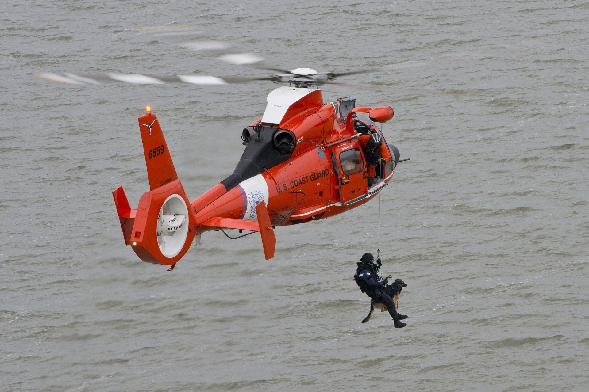 Pies ratownik