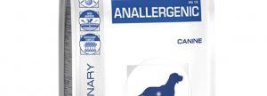 anallergenic canine