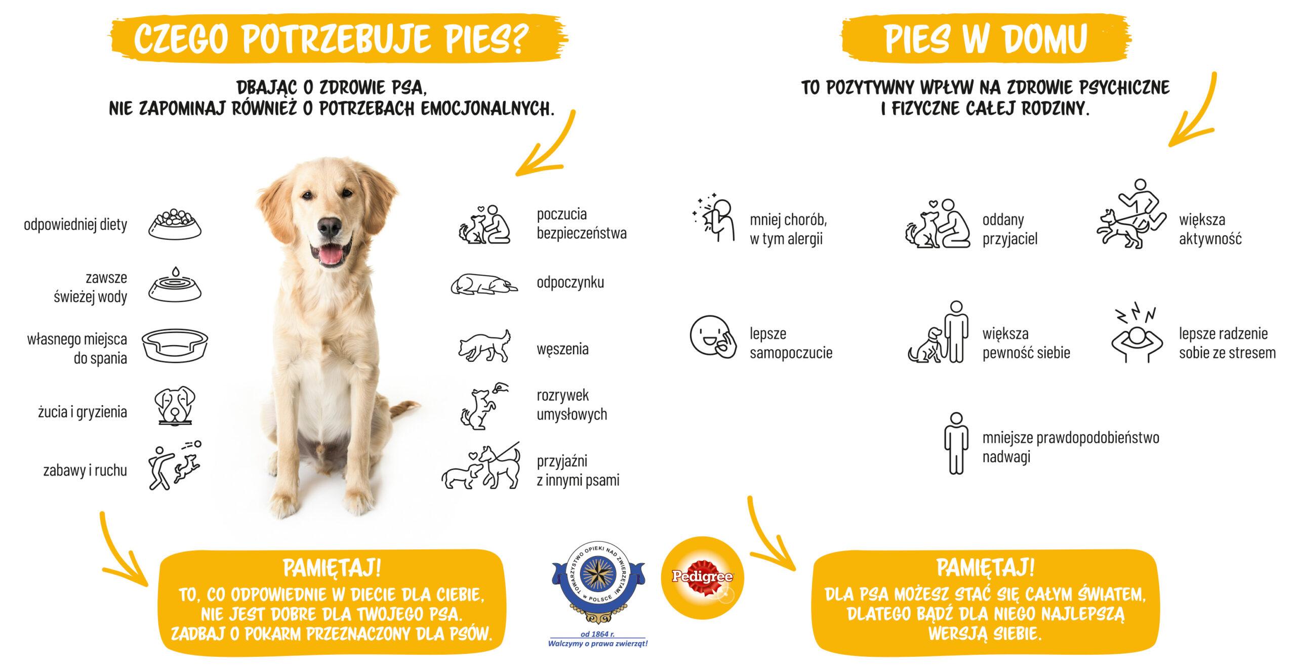 Czego potrzebuje pies?