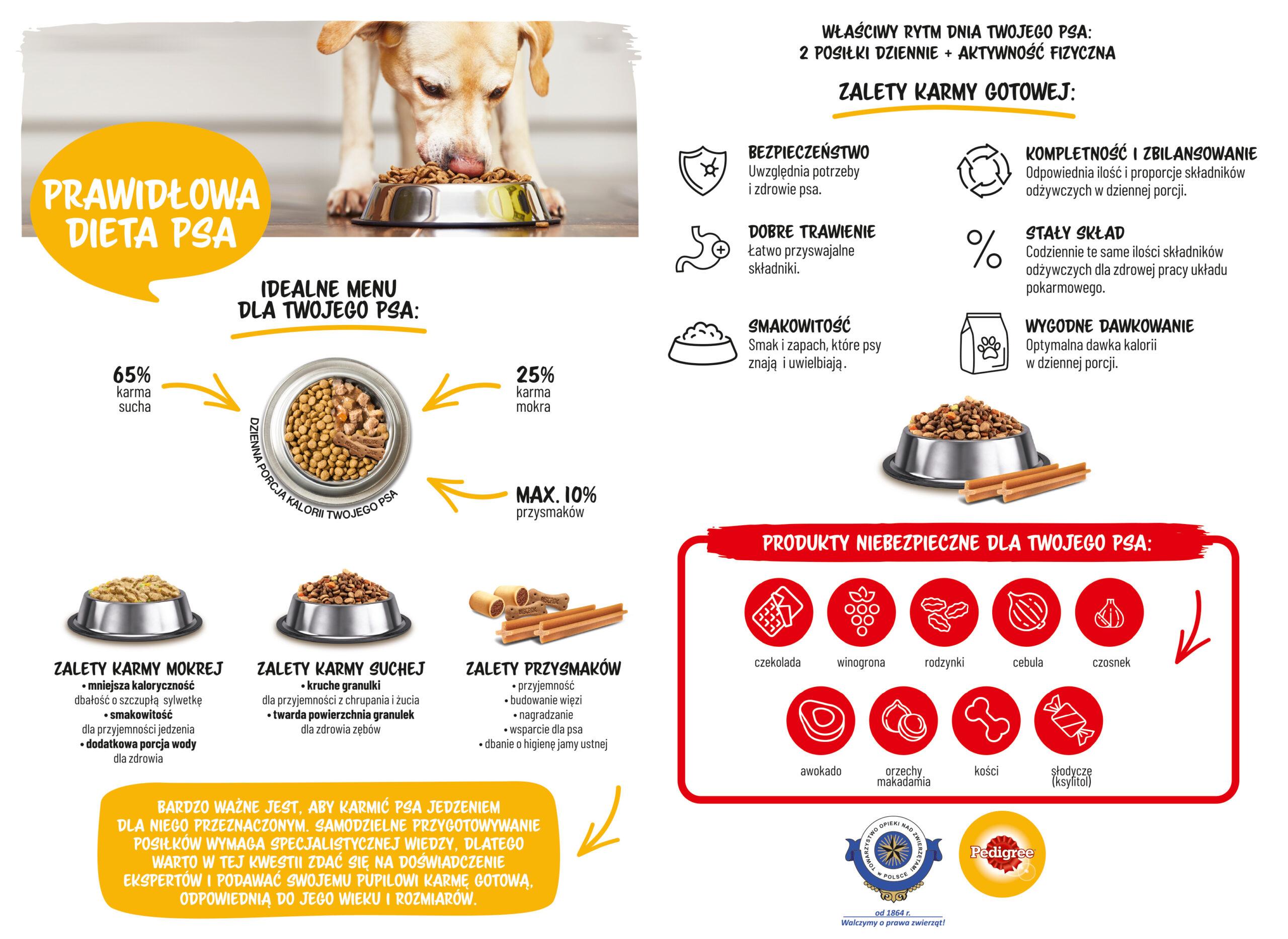 Prawidłowa dieta psa