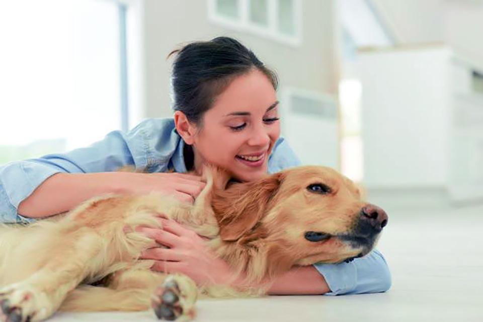 test EHAA zbada zwierzaka na podstawie próbki sierści